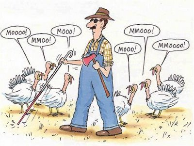 Thanksgiving-funny